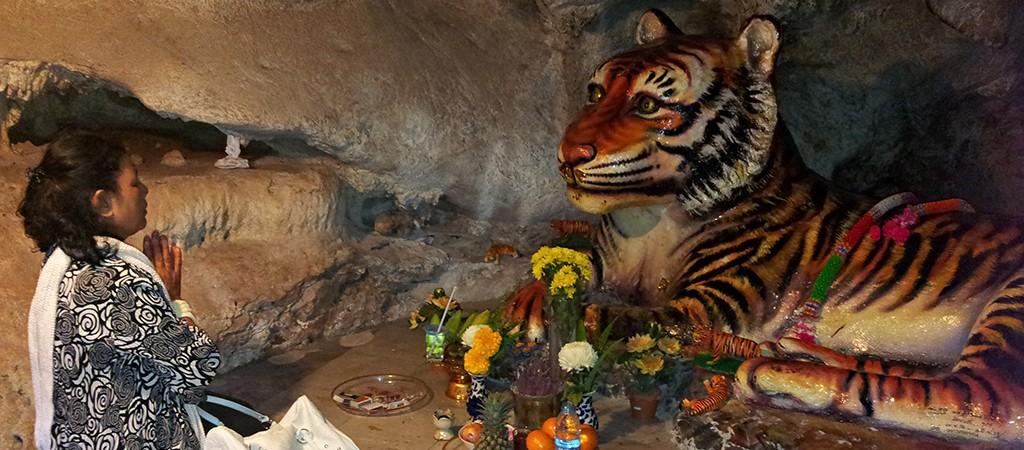 Комплекс Тигриной Пещеры